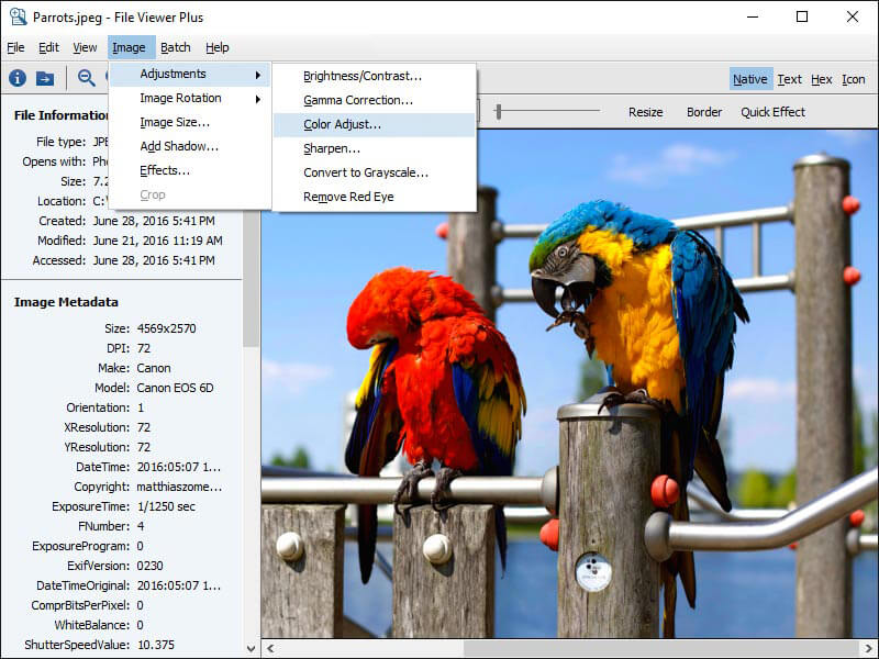 FVP 2 Screenshot - Image Editor