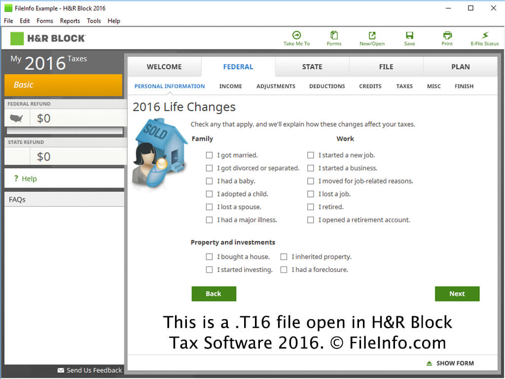 t16 file extension